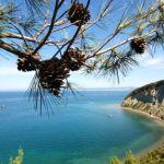 strunjanski-zaliv