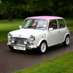 2015 Simply Pink Cavalcade – Mini Rose Cooper