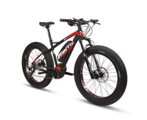 fanitic-fat-bike-sport-frontview-500×409