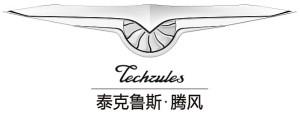 techrules-logo-press