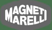 logo magneti