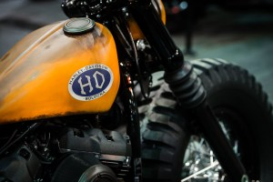 vincitrice-italiana-botk-2018-h-d-bologna-3