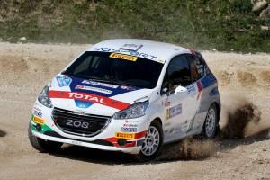 Damiano De Tommaso,Michele Ferrara (Peugeot 208 R2 #34, Aci Team Italia)