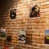 OlloClip_Exhibition_2014_5