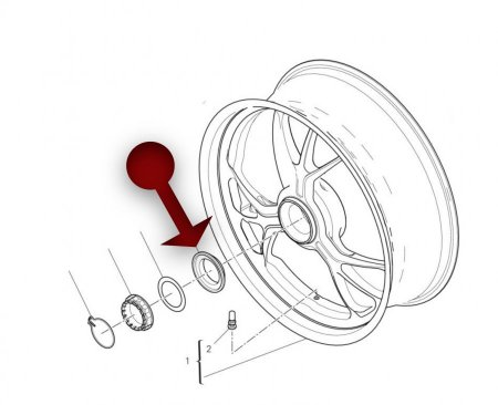 Rear Wheel Axle Nut Cone by AELLA (AT-DU005-OP)