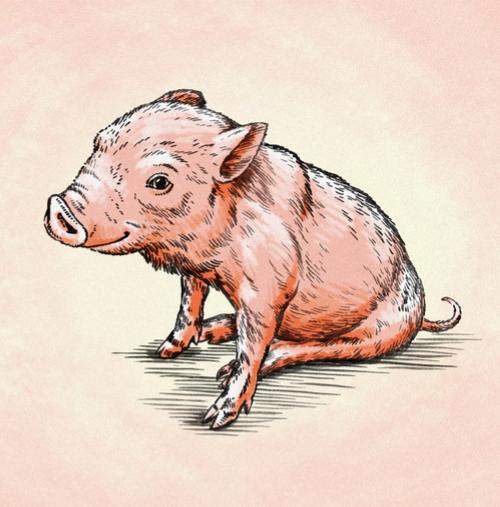Ne pas avoir gardé les cochons ensemble [ne pa avwar ɡardé lé kòSô âsâbl]
