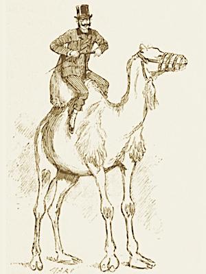 Rejeter le moucheron et avaler le chameau
