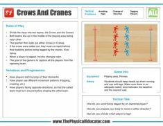 Crows-And-Cranes