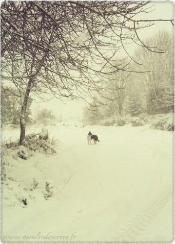 neige-à-Serres-LeMoulinDeSerres-