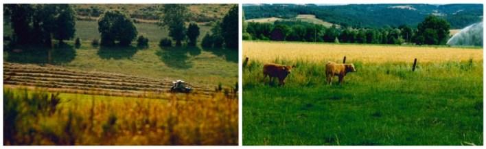 Serres_1995