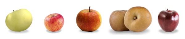 lespommes