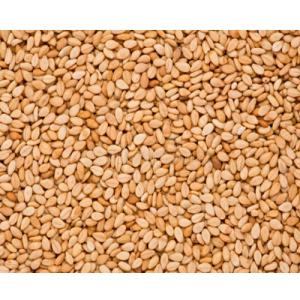 Sesame Seeds Toasted – 0.5 Kg –