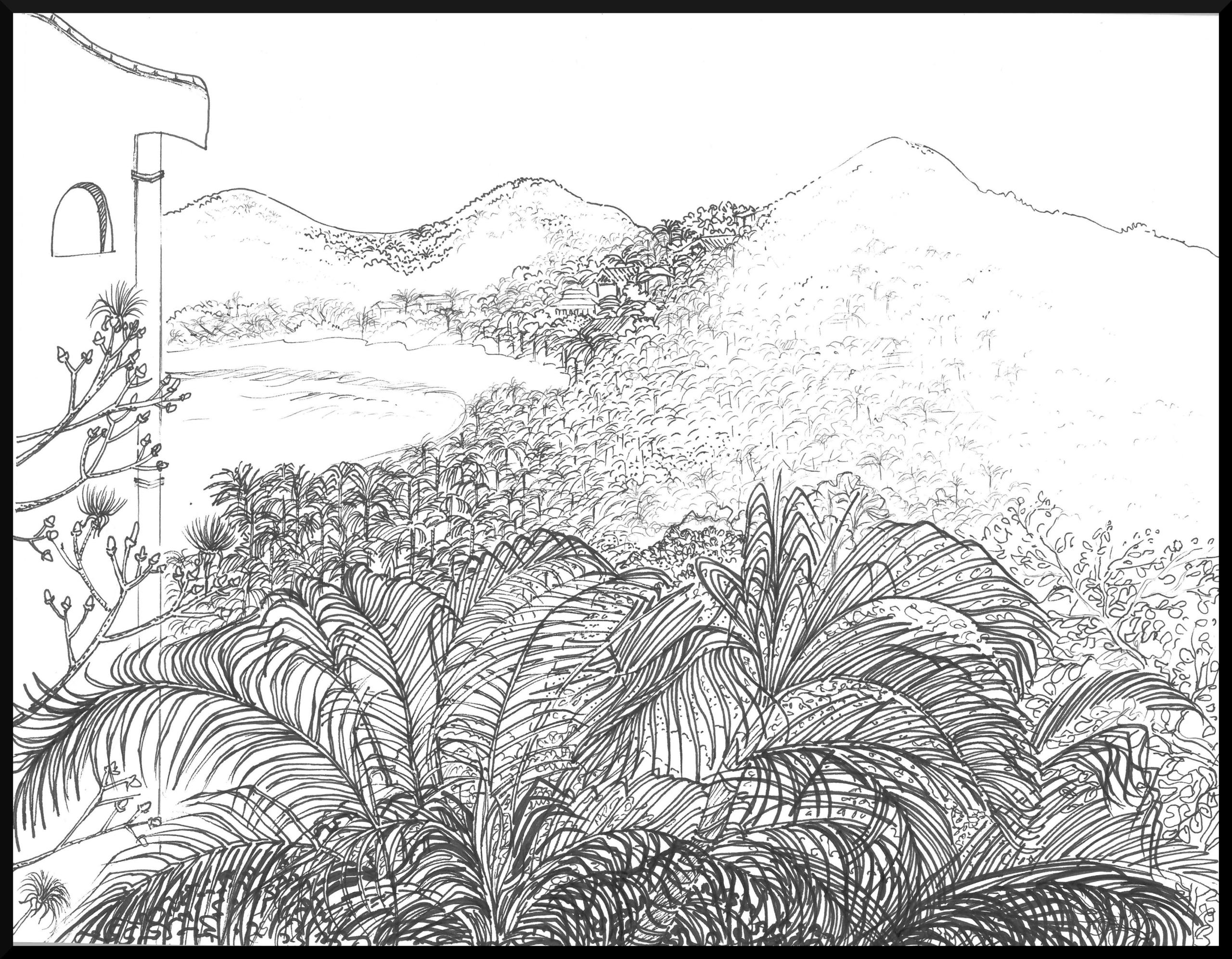 Sayulita 2 - from the mountains to the sea - Bela Ravikumar