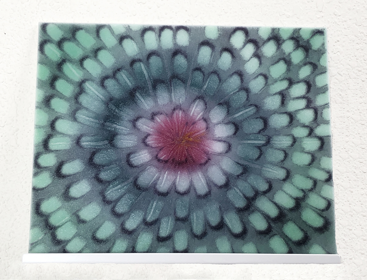 Floral Study Center - Elise Ordorica