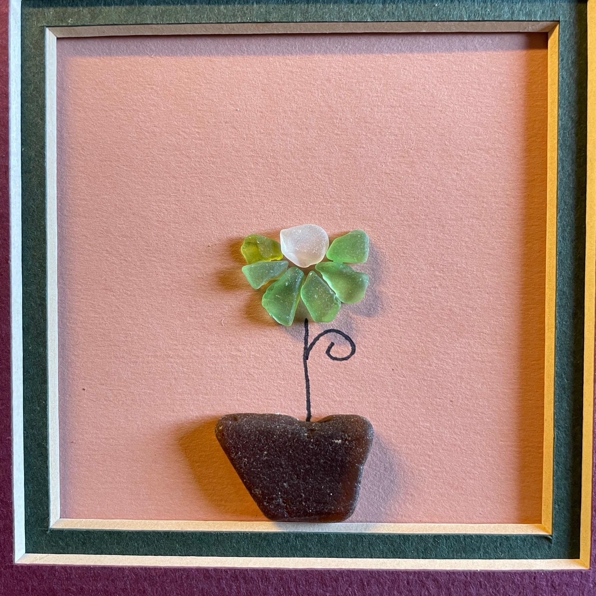 Little Flower - Rain Greenslate