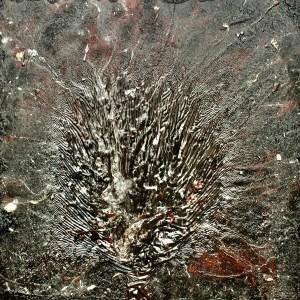 Virus Head - William Bryant