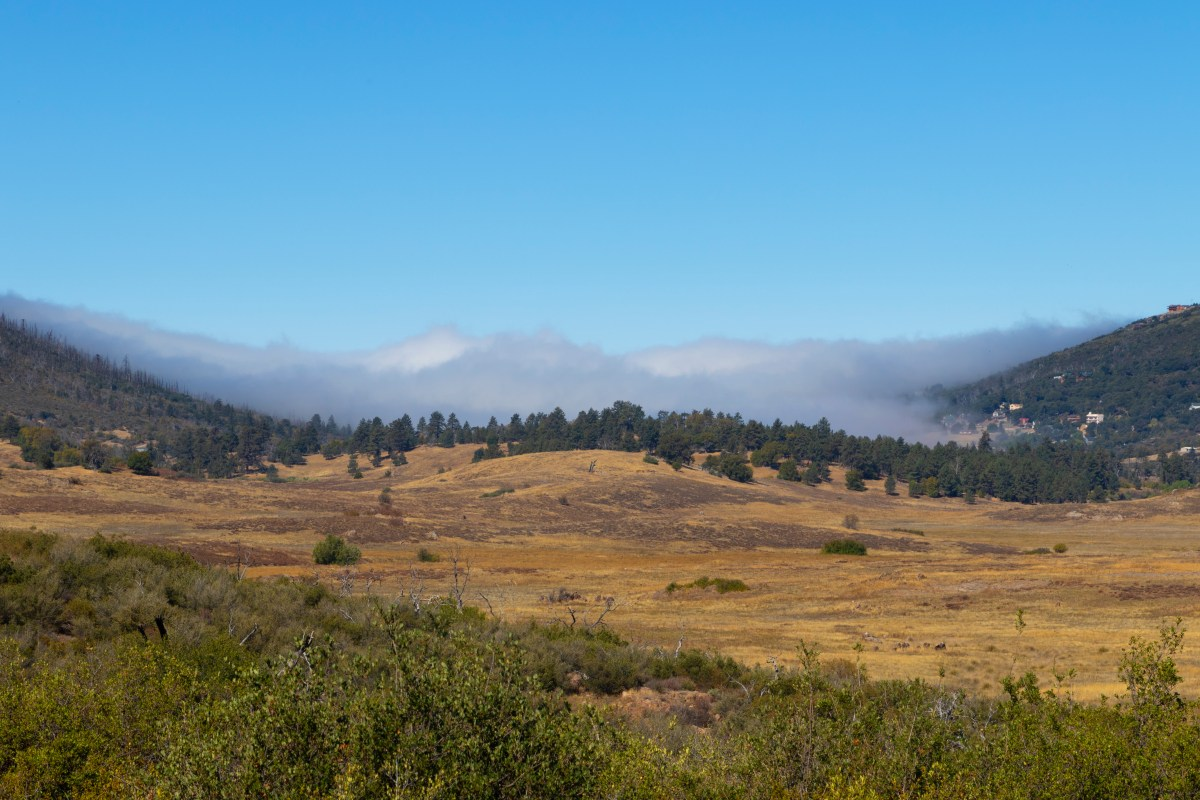 Above the clouds in Cuyamaca