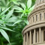 U.S. House of Representatives Votes to Legalize Marijuana