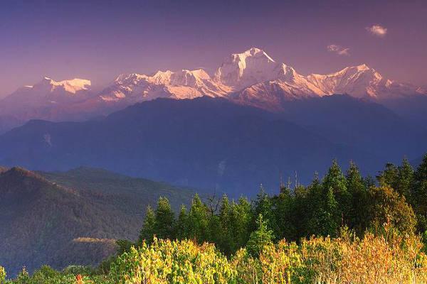 Dhaulagiri Circuit Trek Online Guide  Mountain IQ