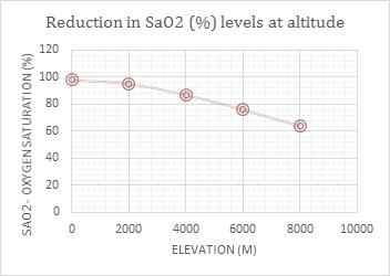Aconcagua Altitude Sickness and Acclimatization