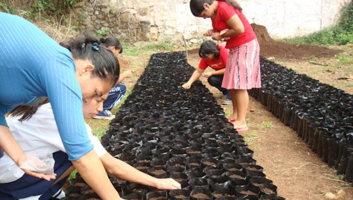 Planting tree seeds in Perquín, El Salvador. Photo courtesy Trees for the Future.