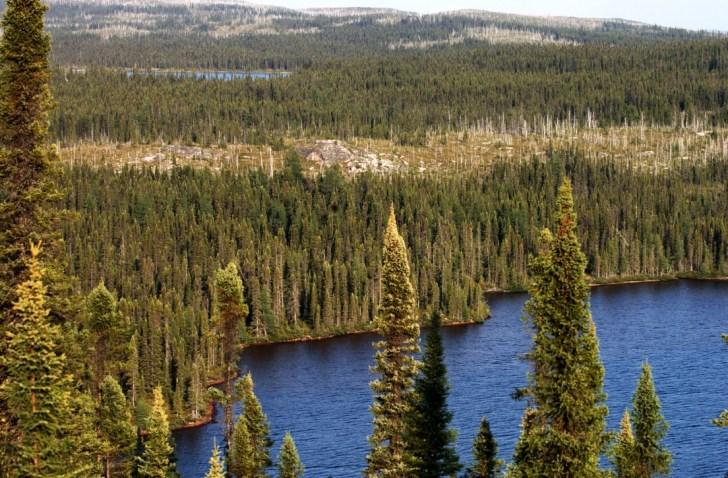 canada-wilderness