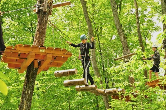 Photo courtesy Treetop Trekking.
