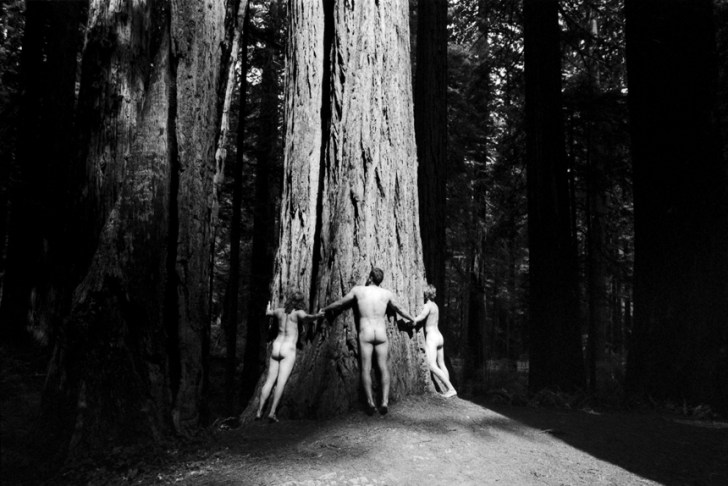 Alex Guiry Photography