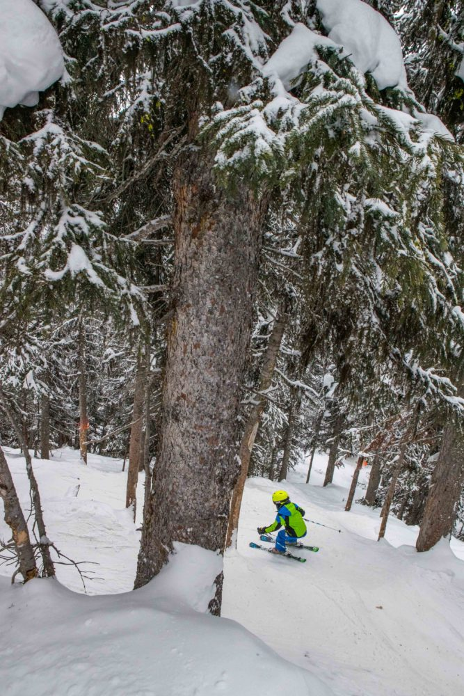 Skiing Tin Can Trees at Sunshine Village Resort.