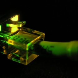 Ethernet Cable Close-up