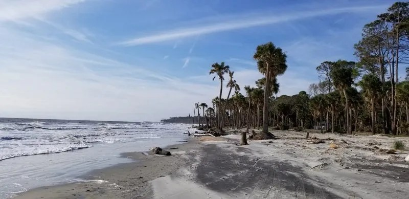 beach at hunting island campground