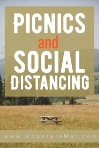 Pinterest Pin for blog Picnics and Social Distancing