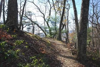 trail in douthat state park by virginia State Parks