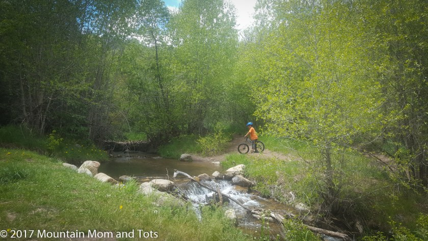 First Time Mountain Biker by stream