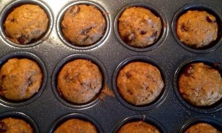 Leslie's Mini Pumpkin Chocolate Muffins