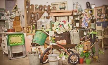 Antique Shows- Fall 2017