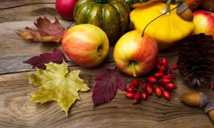 The Autumnal Harvest