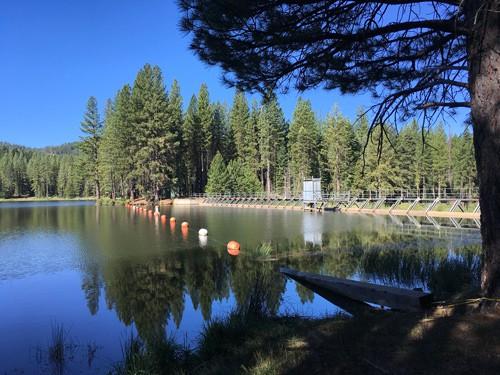 The Restoration of Walker Lake- (Mountain Meadows Reservoir)