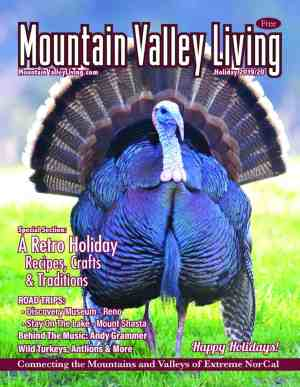 Current Holiday Edition