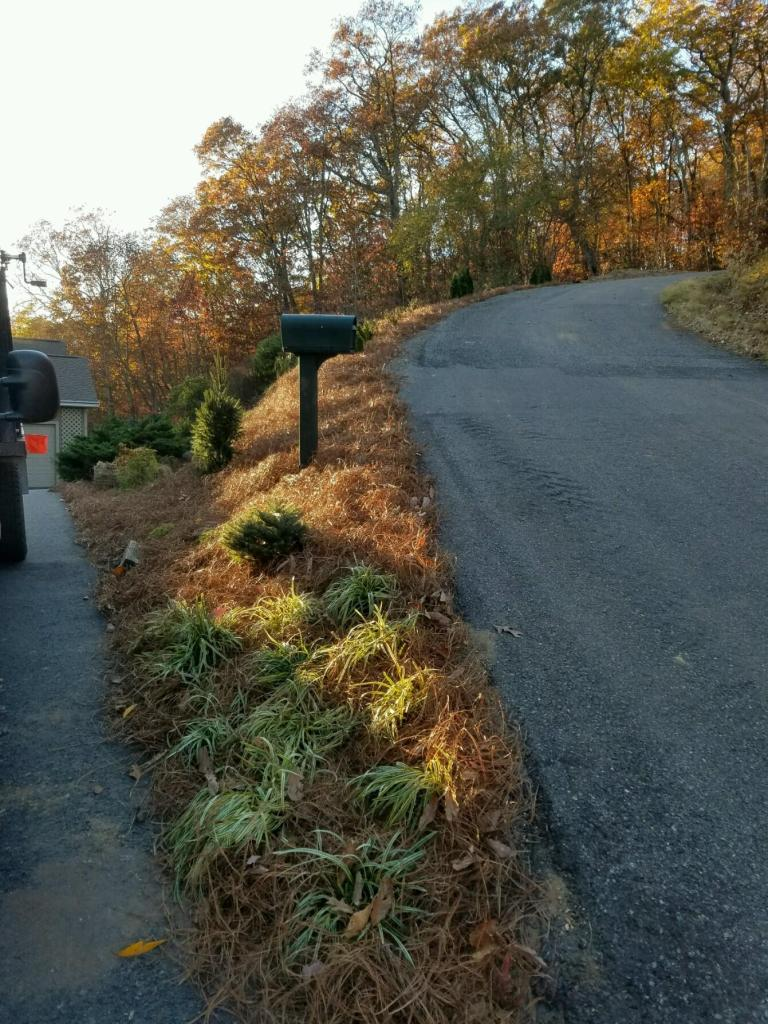 Landscaping - Greenscaping
