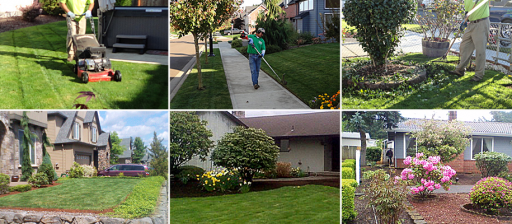 Landscape Maintenance Programs