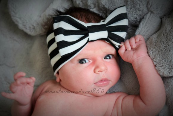 Mountain View Lane blog | Baby News and Updates