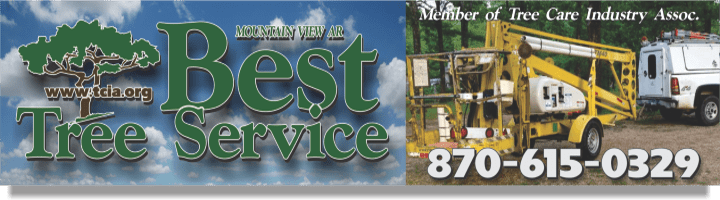Best Tree Service in Mountain View Ar