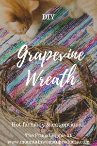 DIY Grapevine Wreath with a red cat