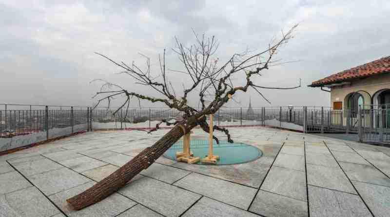 """Tree Time"". Arte e natura ai Cappuccini"