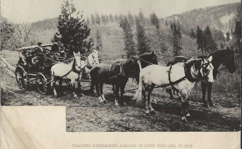 Six-horse sight-seeing carriage in Mount Hood area in 1893