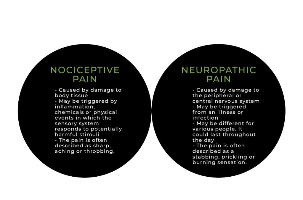 summary of nociceptive and neuropathic pain