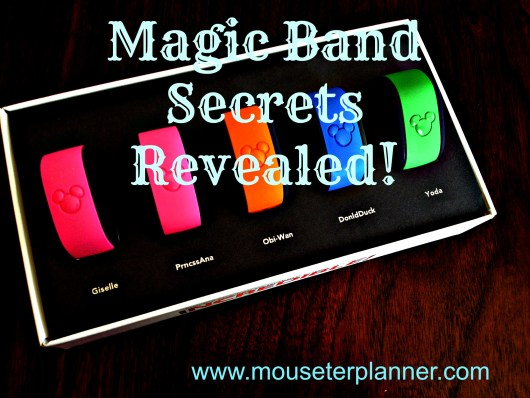 Magic Band Secrets Revealed