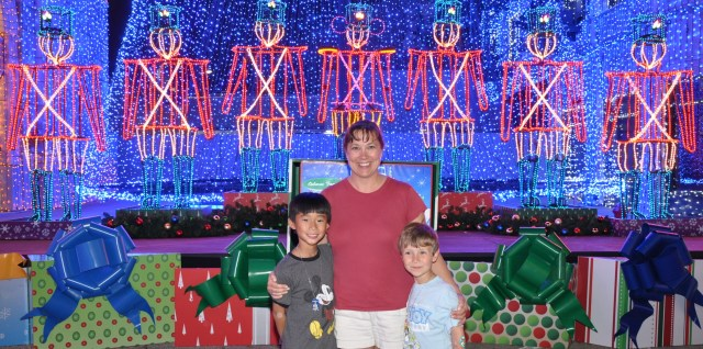 Tips for the Osborne Family Spectacle of Lights