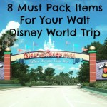 8 Must Pack Items For Your Walt Disney World Vacation